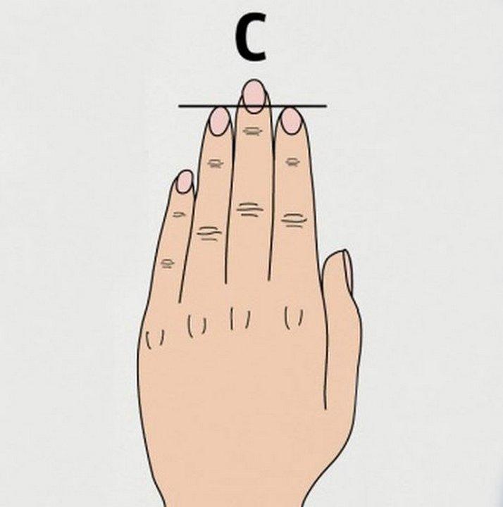 Мужской член три больших пальца