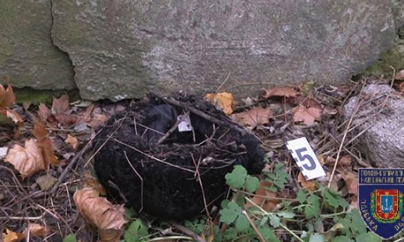 ВОдессе обнаружили обгоревший труп наинвалидной коляске