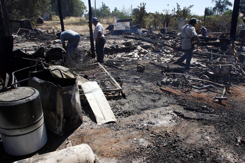 Власти Чили объявили чрезвычайный режим из-за сильных пожаров