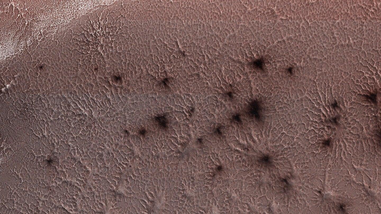 Те самые марсианские пауки
