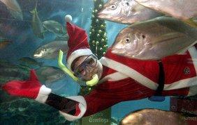 Санта Клаусы совершают невероятное