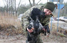 Такие средства защиты должны уберечь служебных собак от пуль