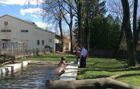 В Киевском зоопарке открыли сезон