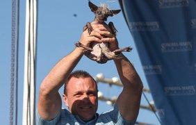 Джим Партридж со своим псом по кличке Груви