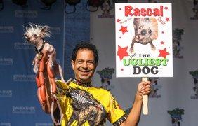 Дэйн Эндрю со своей собакой по кличке Раскал
