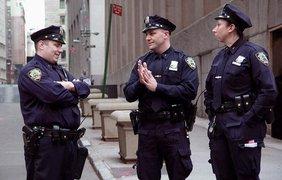 Для сравнения, полиция США.
