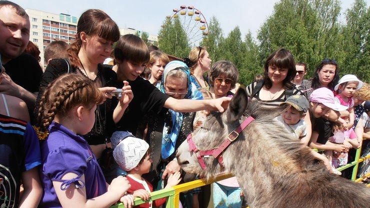Животные показали как выглядят люди в зоопарке. Фото metronews.ru