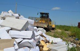 """Уничтожение """"запрещенного"""" сыра. Фото politolog.net"""