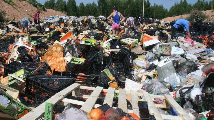 Пожар на складе горючих материалов в Буче локализован, - ГосЧС - Цензор.НЕТ 8286