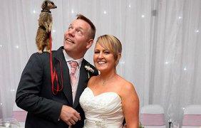 Молодожены устроили свадьбу с экзотическими животными
