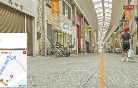 Cat Street View в Японии