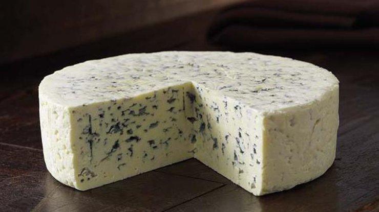 Сыр сплесенью продлевает жизнь человека— специалисты
