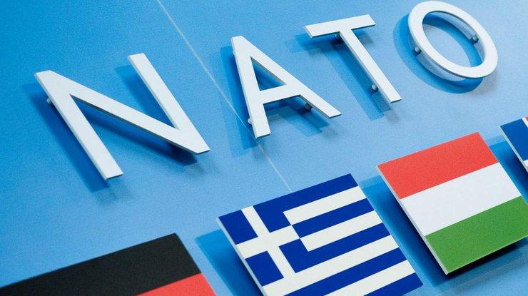 Новым президентом парламентской ассамблеи НАТО стал симпатик Украины