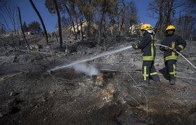 Пожары в Израиле: огонь не могут потушить пятые сутки