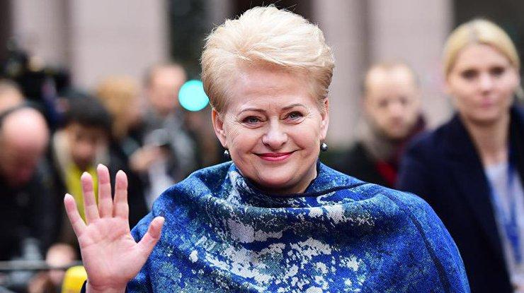 Грибаускайте вначале зимы приедет в государство Украину