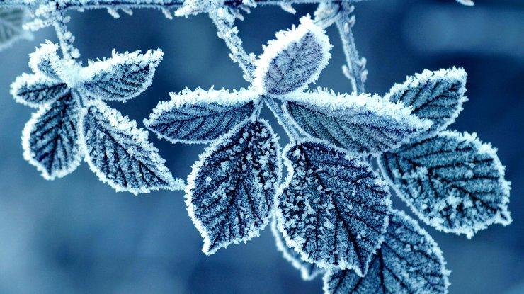 Учёные раскрыли причину холодных зим впоследнее время