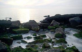 Азовское море покрылось льдом. Фото: Дмитрий Капустин