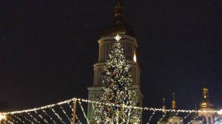 НаСофийской площади вКиеве зажгли новогоднюю елку