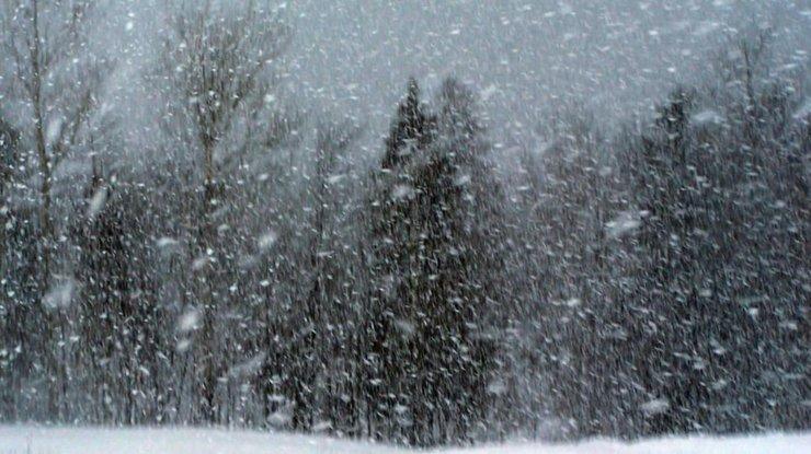 Появился прогноз погоды вУкраинском государстве навыходные— Туман иснег