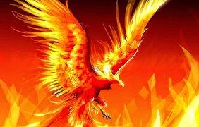 кто родился под знаком ворона