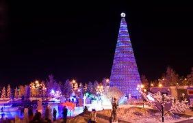 Что подарить на Новый год родным и близким: лучшие идеи (фото: krsk.kp.ru)
