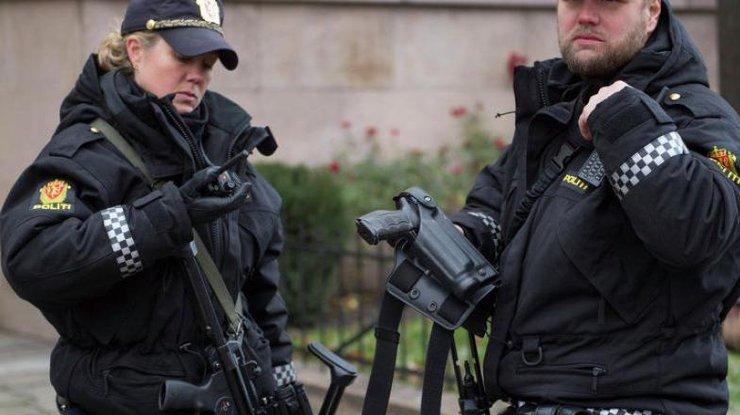 Натерритории норвежской школы неизвестный зарезал женщину и ребенка