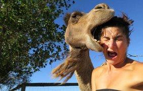 Лучшие снимки животных