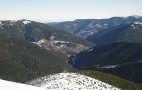 Дорога к горе устелена изувеченной природой и лысыми пенькам