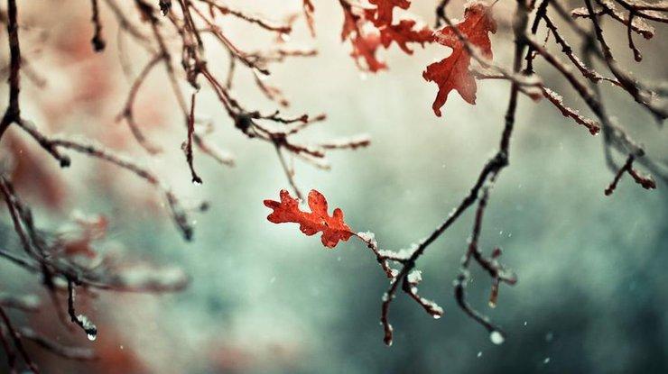 Волгоград погода на месяц февраль
