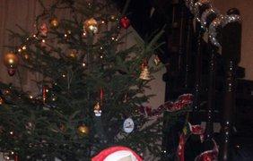 """Макар, 9 мес: """"Я в восторге! Мир чудесен. Елочка искрится. Обезьянка, Санта Клаус, в домик к нам стучится!"""""""