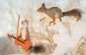 Фотопроект Герта Веггена