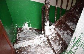Во Львове пьяный житель избил полицейских