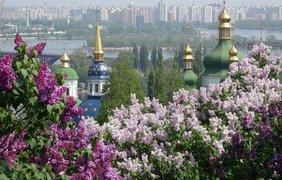 На Донбассе вступил в силу режим тишины в связи с Пасхой. Нарушений пока нет - Цензор.НЕТ 5291