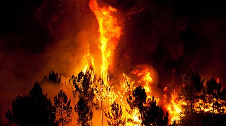 Канадский город Форт МакМюррей навсе 100% эвакуирован из-за бушующих лесных пожаров