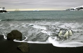 Невероятно красивые фото Антарктиды