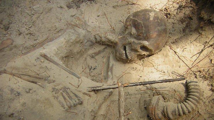 день археолога картинки