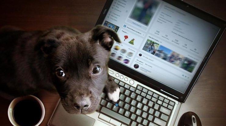 Соцсеть Vkontakte.ru окончательно изменил дизайн