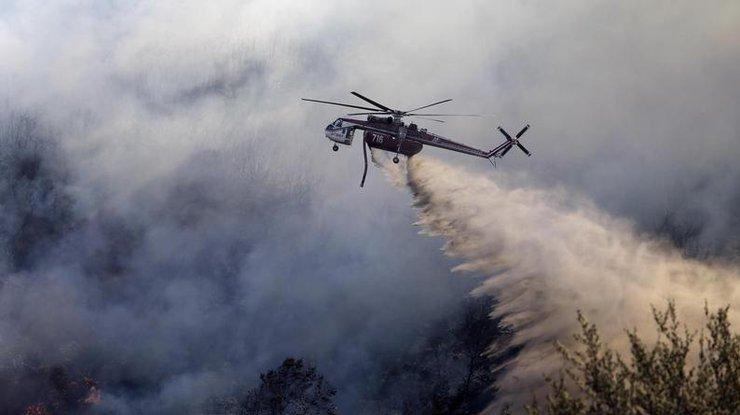 Эвакуированным из-за крупного природного пожара вКалифорнии разрешили вернуться домой