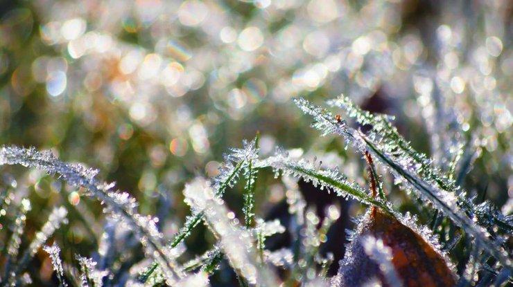 ВУкраинском государстве ожидаются заморозки