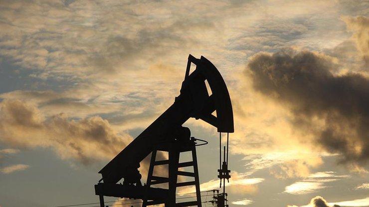 ВАлтайском крае набензин цены растут, надизтопливо— падают