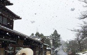Снегопад превратил Киото в страну чудес