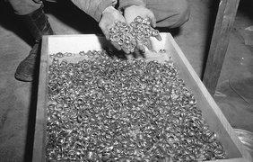 Тысячи золотых обручальных колец мёртвых евреев