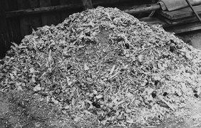 Куча пепла и костей из 88 военнопленных результат одного дня в концентрационном лагере Бухенвальд