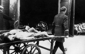 Тела погибших евреев в Варшаве в 1943 году
