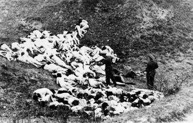 Массовой расстрел евреев 1942 года