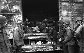 Вагоны с мертвыми, которые были обнаружены на железнодорожной ветке в лагере Дахау в Германии, 3 мая 1945 года