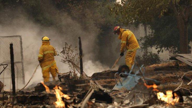 Насевере Калифорнии растет число погибших лесных пожаров
