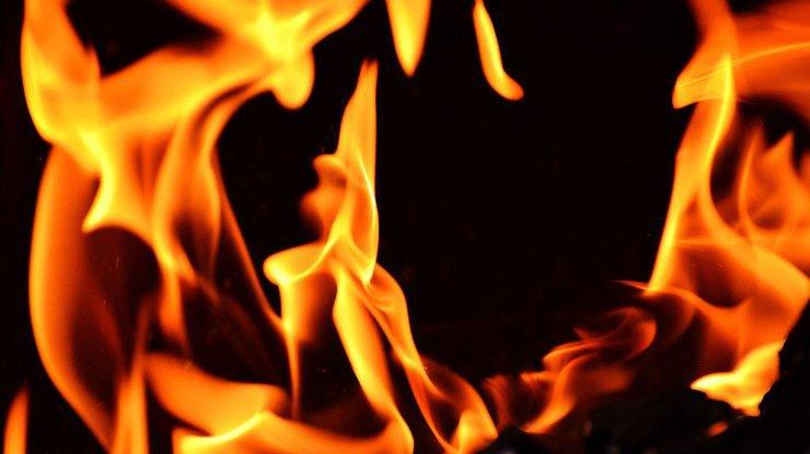 Вжилом доме наТаирова зажегся лифт, вкотором находилась женщина