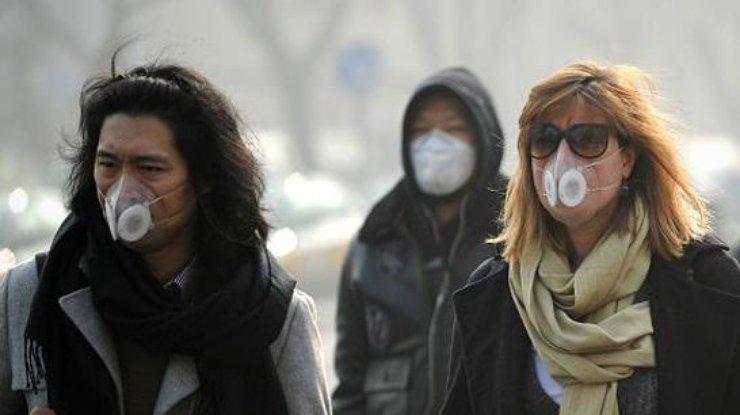 «Экологический Армагеддон» уже наступил— ужаснулись ученые