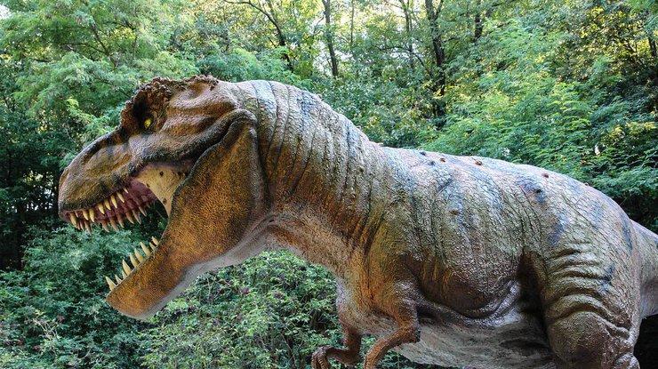 Ученые узнали, зачем тираннозаврам передние лапки